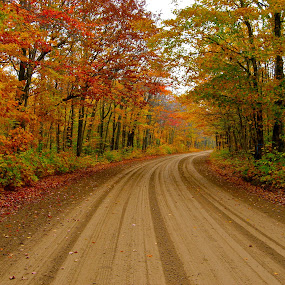 The road to Fall by Kimberly Davidson - City,  Street & Park  Street Scenes ( michigan, fall landscape, dirt road, road, upper peninsula of michigan, fall color change,  )