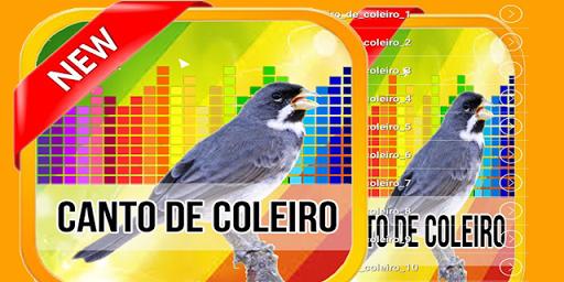 COLEIRO ZERO ZERO MP3 CANTO TUI BAIXAR DE TUI