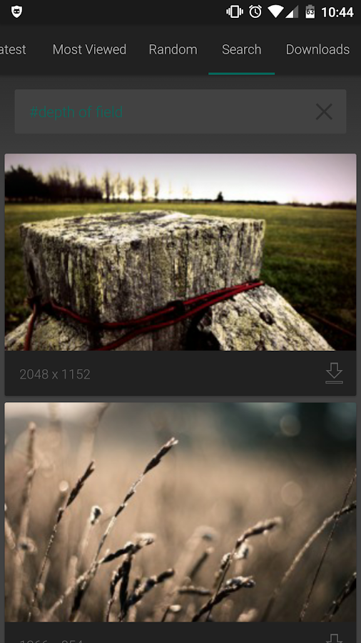 Wallhaven – Free Wallpapers- screenshot