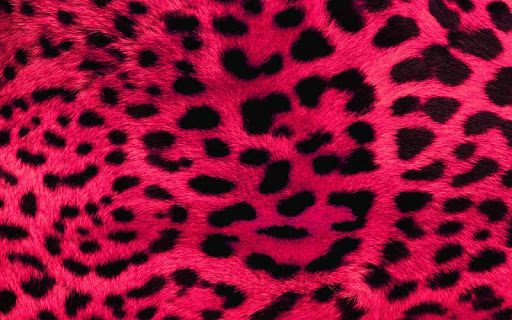 LeopardのテーマHD