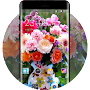 Theme for Spice G-6565 Flores Wallpaper APK icon