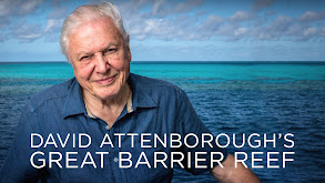 David Attenborough's Great Barrier Reef thumbnail