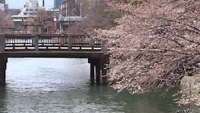 Kyoto, Japan thumbnail