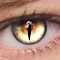 FoxEyes - Change Eye Color 2.4.0 Apk