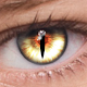 FoxEyes - Change Eye Color by Real Anime Style Download for PC Windows 10/8/7