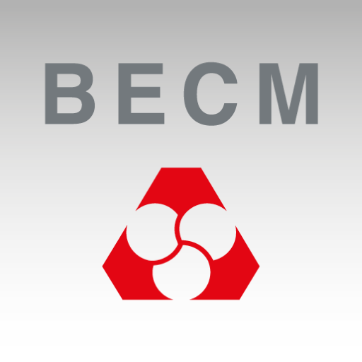BECM Germany Icon