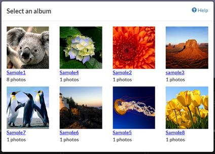 Google Photos album list example
