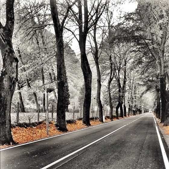 lungo la via di __francesca_