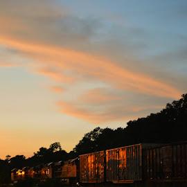 Train under sunset by Rhonda Kay - Transportation Trains