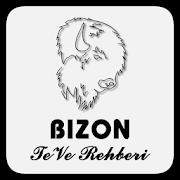 Bison TeVe Rehberi