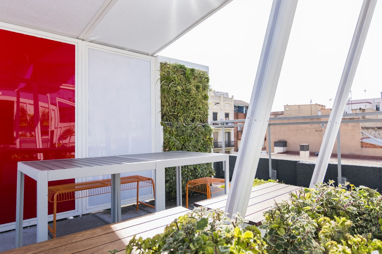 Pequeños jardines verticales