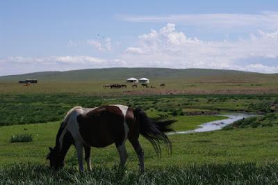 Mongolia di Lamberto