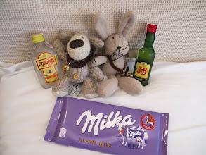Photo: Day 89 - Baby Big Bun and Boofle Raiding the Hotel Mini Bar!