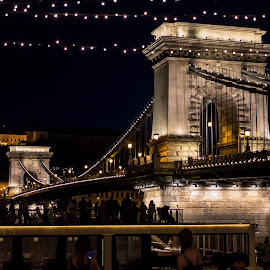 Chain Bridge at Night by Mo Kazemi - Buildings & Architecture Public & Historical ( budapest hungary, chain bridge, city, night, nightscape, budapest, bridge, europe, hungary, architecture, night photography )