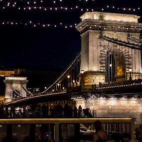 Chain Bridge at Night by Mo Kazemi - Buildings & Architecture Public & Historical ( budapest hungary, chain bridge, city, night, nightscape, budapest, bridge, europe, hungary, architecture, night photography )