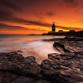 Hook Head Kighthouse by Peter Krocka - Landscapes Waterscapes ( ireland lighthouse )