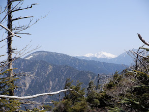 南アルプスの展望(左から中ノ尾根山・明石岳・聖岳・光岳)