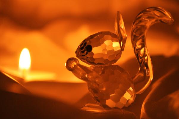 Riflessi cristallizzati di Ilaria Bertini