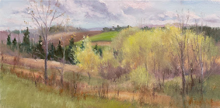 "Photo: Spring View, Skaneateles (NY) Conservation Area, 10x16""oil, $375"