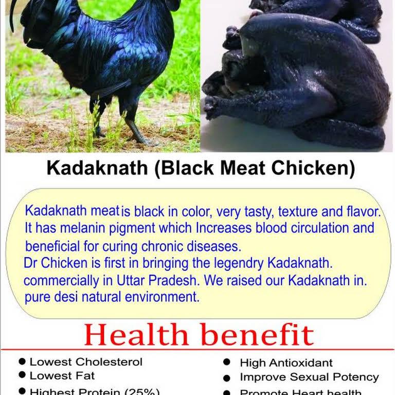 Dr Chicken Farms - Chicken Shop Online in Lucknow