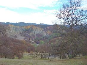 Photo: Redbud Trail, Cache Creek Wildlife Area. Photo by OliverH.