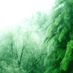 Frosty green by Keysha Wallace-Patton - Digital Art Things