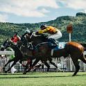 Horse Racing Wallpaper icon