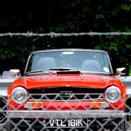 Triumph Behind the Wire by DJ Cockburn - Transportation Automobiles ( spa valley railway, britain, vehicle, eridge station, automobile, kent, triumph tr6, car, barbed wire, classic car, antique, sports car, historic, convertible, cabriolet, heritage, history, transport, transportation, vtl 181k, wire, red car, vintage, eridge, 2018 summer transport festival, travel, fence )