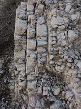 Photo: Geologia: Arenisques micàcies grises