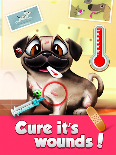小狗护理 - 有点兽医!