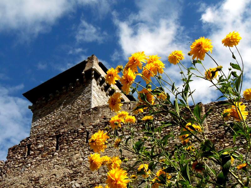 Castello di Ossana di supergigi