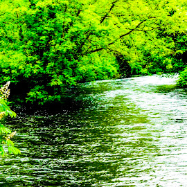 Winding  by Raymond Fitzgerald - Landscapes Waterscapes ( blackwater cork ireland water river )