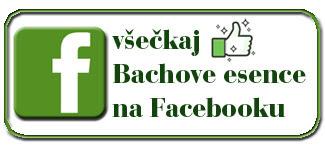 FB Bachove esence