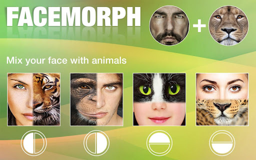 Face Morphing 1.1 screenshots 2