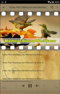 Masteran Burung Pleci Gacor 2.3.7 APK Mod for Android 3