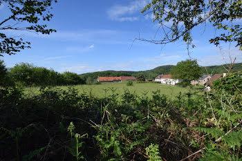terrain à Saint-Martin-du-Puy (58)