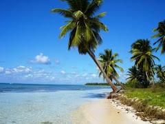 Visiter Ile Saona