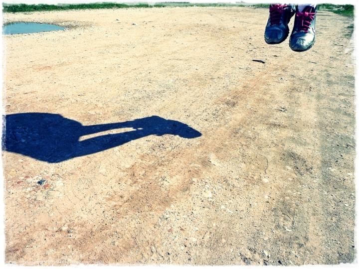 Il gioco delle ombre di Sara Imbesi