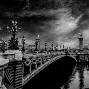Pont Alexandre III by Aamir DreamPix - Buildings & Architecture Architectural Detail ( building, architechture, europe, pont alexandre iii, architectural detail, architecture, architect, paris, monuments, buildings, architectural, france, monument, bridge, bridges,  )