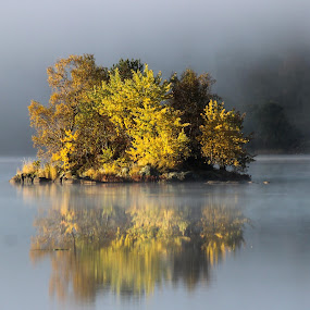 A foggy October morning by Espen Rune Grimseid - Landscapes Waterscapes ( fog, lakes, reflections, autumn colors, light,  )