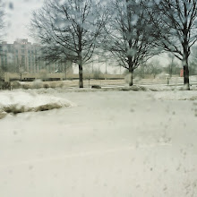 Photo: The snow is just starting today, I do not enjoy this.