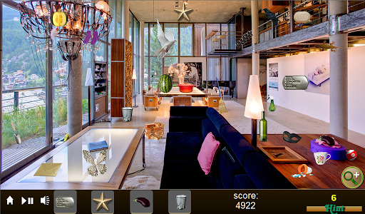Clean My Mansion Hidden Object