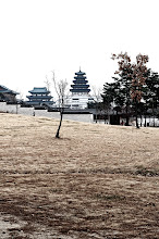 Photo: I could imagine how Gyeongbokgung Palace would look in summer, when the grass is green and the trees have leaves.
