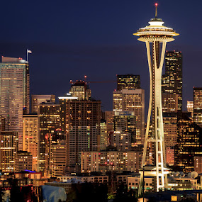 Seattle Skyline by Ruth Sano - City,  Street & Park  Skylines ( space needle, skyline, seattle, night, nightscape, city at night, street at night, park at night, nightlife, night life, nighttime in the city,  )