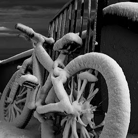 not in use.. by Frodi Brinks - Artistic Objects Other Objects ( canon, clouds, sky, winter, bike, black and white, bicycle )
