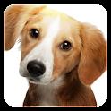 Dog barking sounds Widget icon