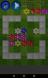 Flowers Popper - náhled