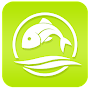 Fly Fishing APK icon