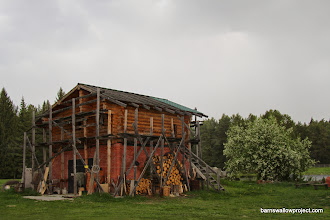 Photo: A structure on the Yekaterinburg research site where we caught our first two barn swallows