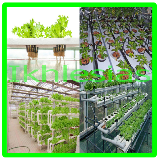 Hydroponic Planting System Ideas Android APK Download Free By Ikhlesias